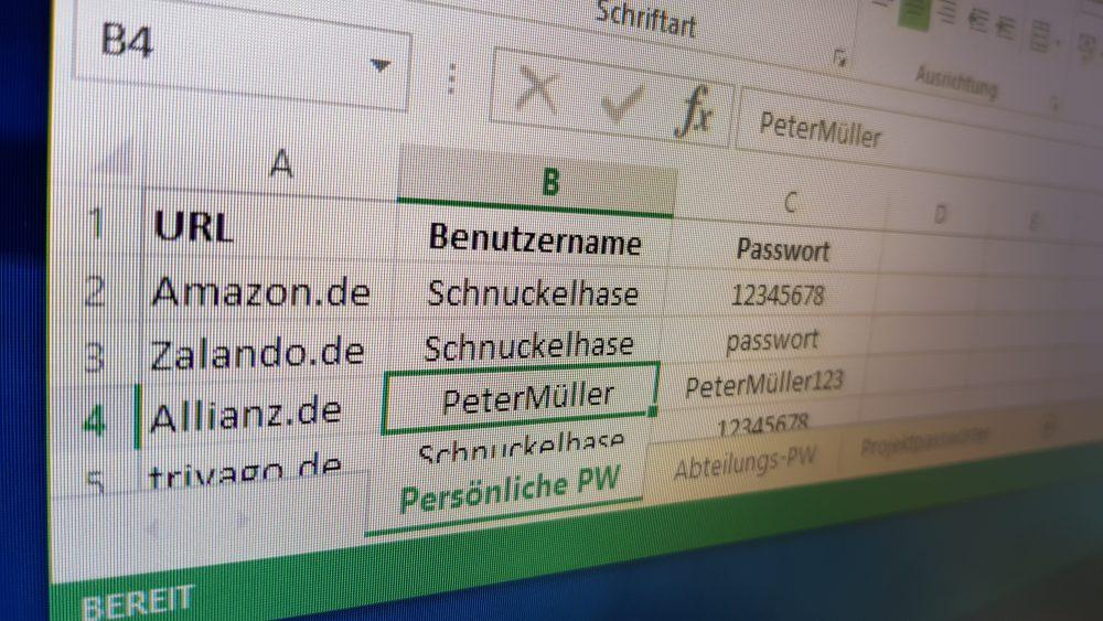 Exceltabelle zum Passwort Management mit verschiedenen häufig genutzten Passwörtern